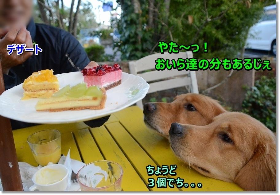 DSC_5728 デザートでち~