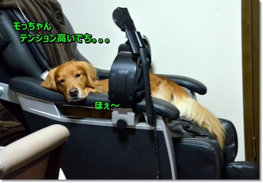 DSC_6045 モっちゃんテンションたか・・