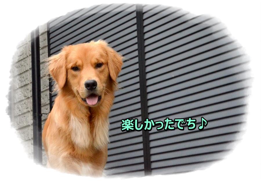 DSC_5982 ほぇ?