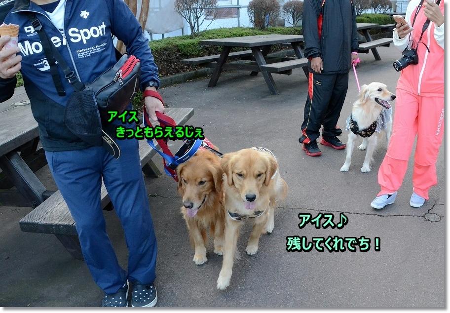DSC_6381いくじぇ~