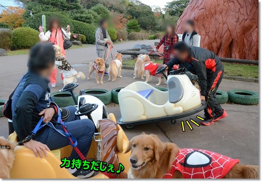 DSC_6388すごいじぇ~!