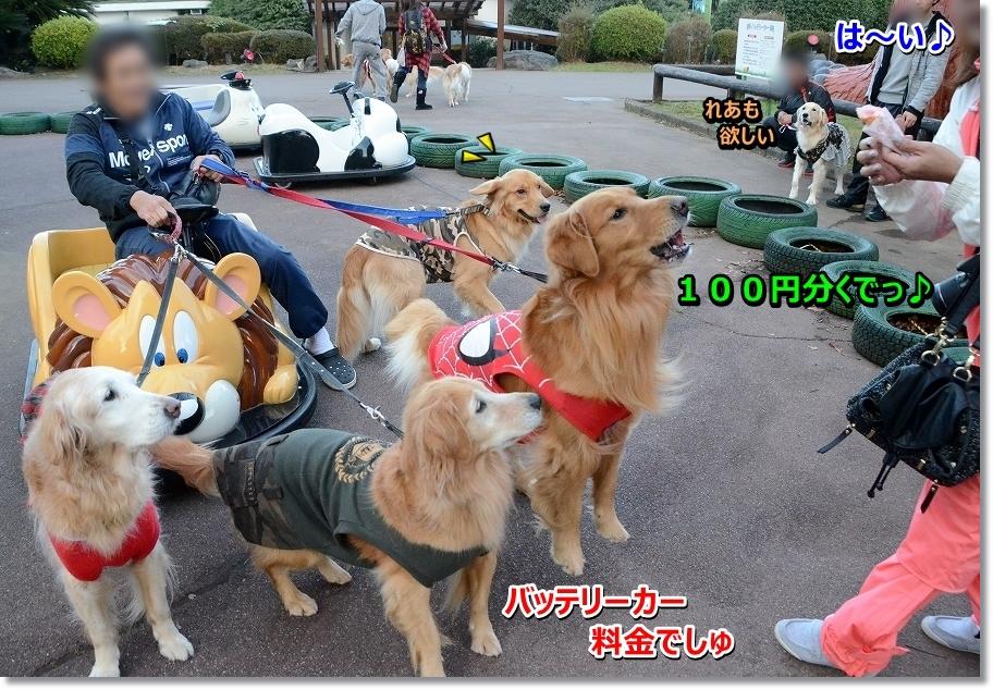 DSC_6429100円分