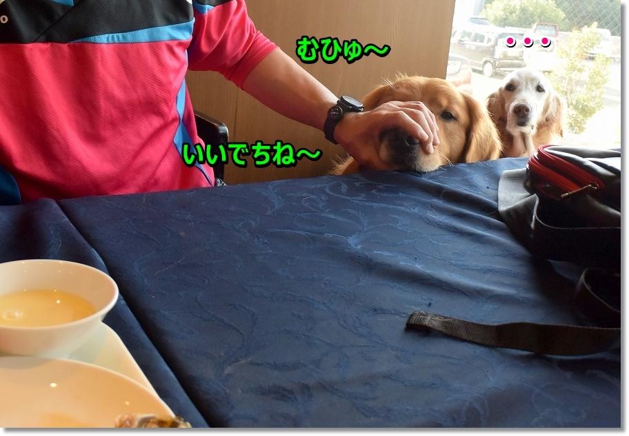 DSC_4847 むひゅ~