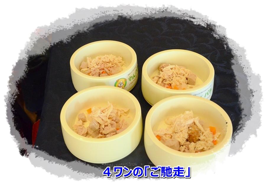 DSC_66554ワンのお食事