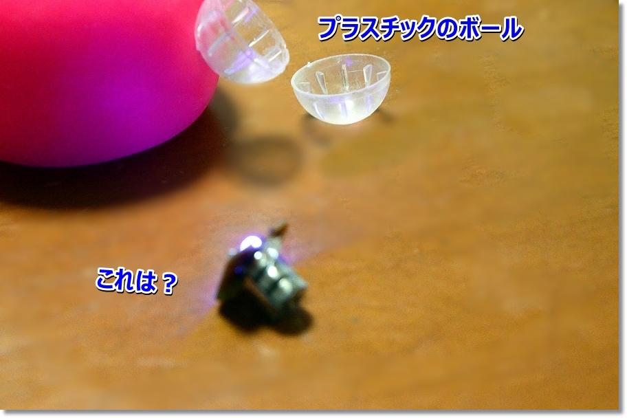 DSC_7489プラスチックのボールの中に電池