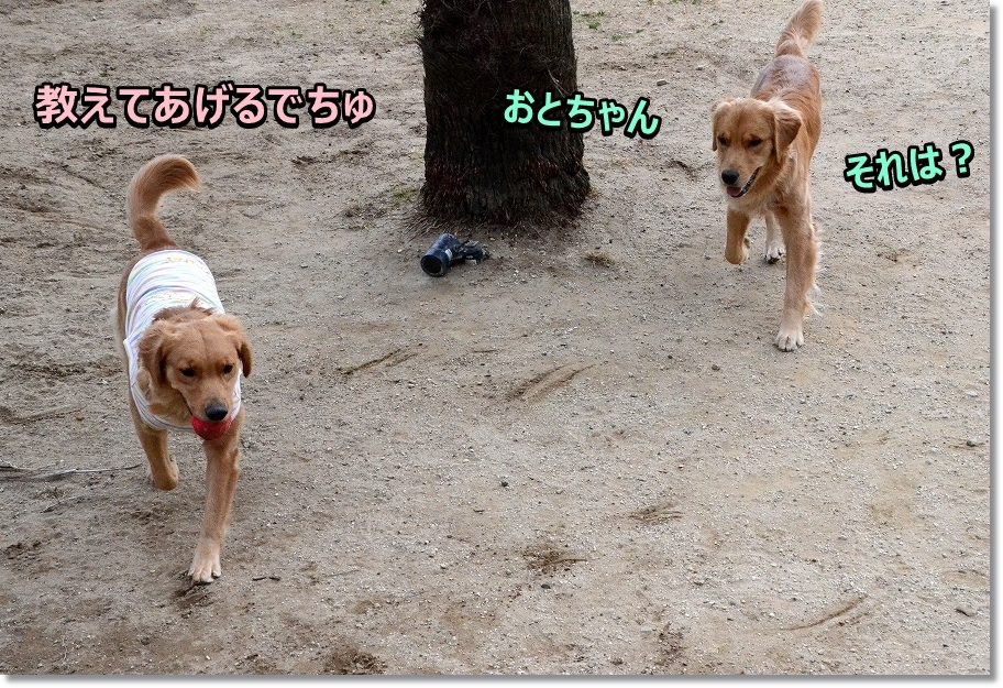 DSC_7240おと&らん
