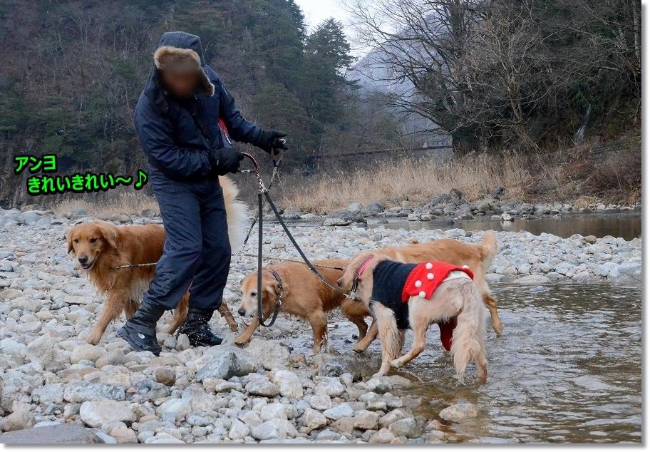 DSC_8606足を洗いに川へ