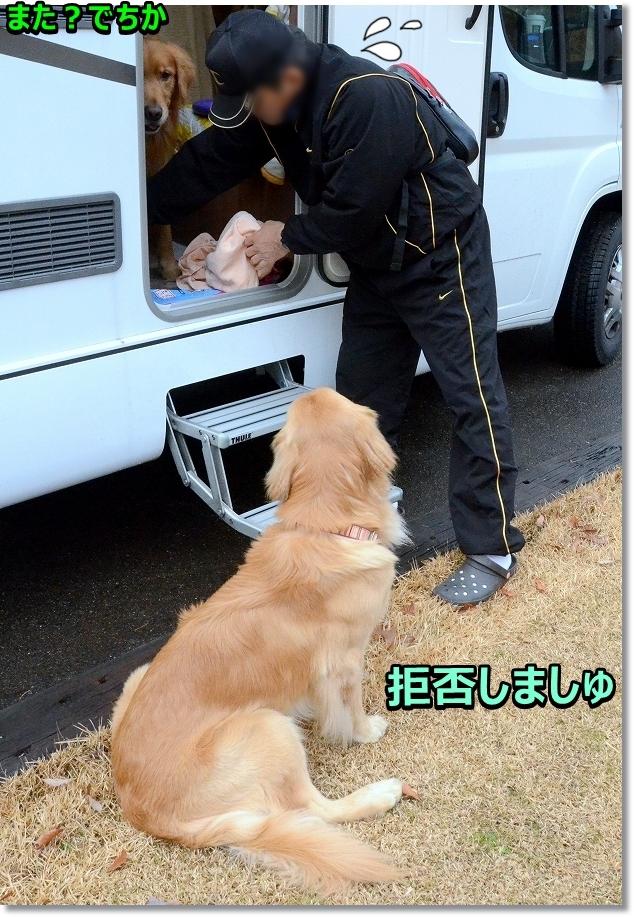 DSC_9048まったく - コピー