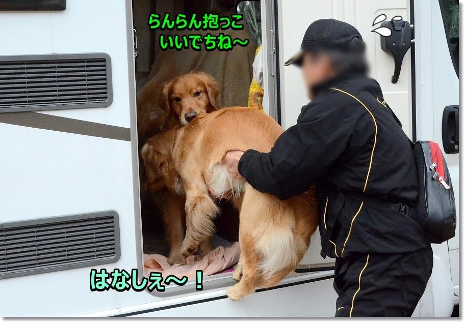 DSC_9053いいでちね~抱っこ - コピー