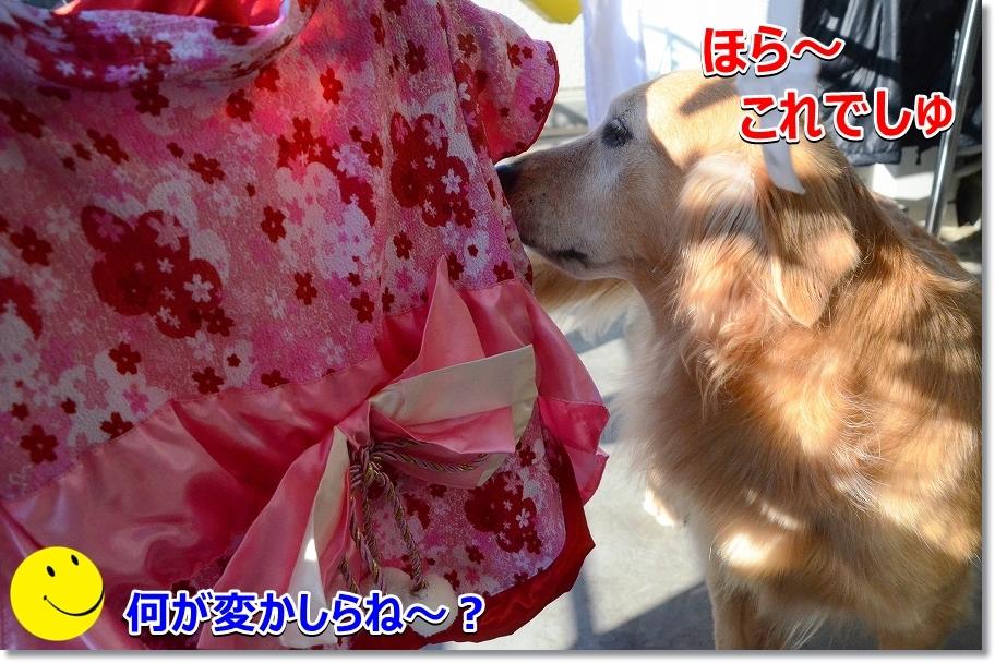 DSC_8027ほら~