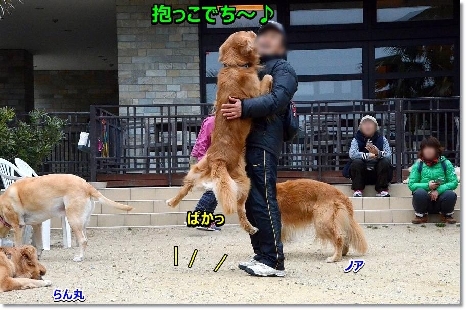 DSC_0316 抱っこ~びっくり