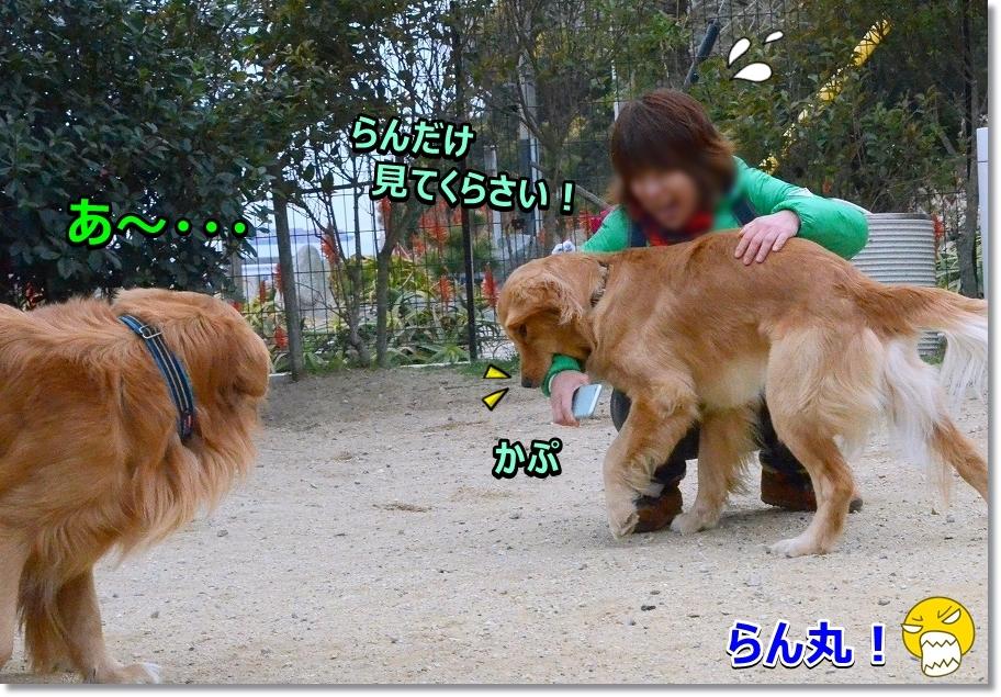 DSC_0372ぱくっ!