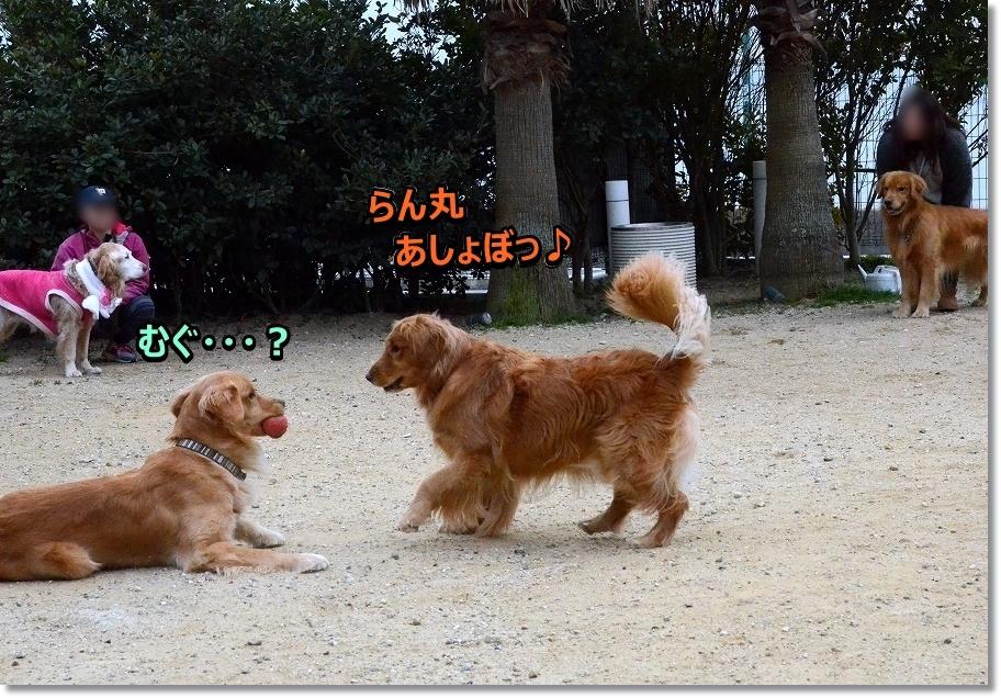 DSC_0400あしょぼ