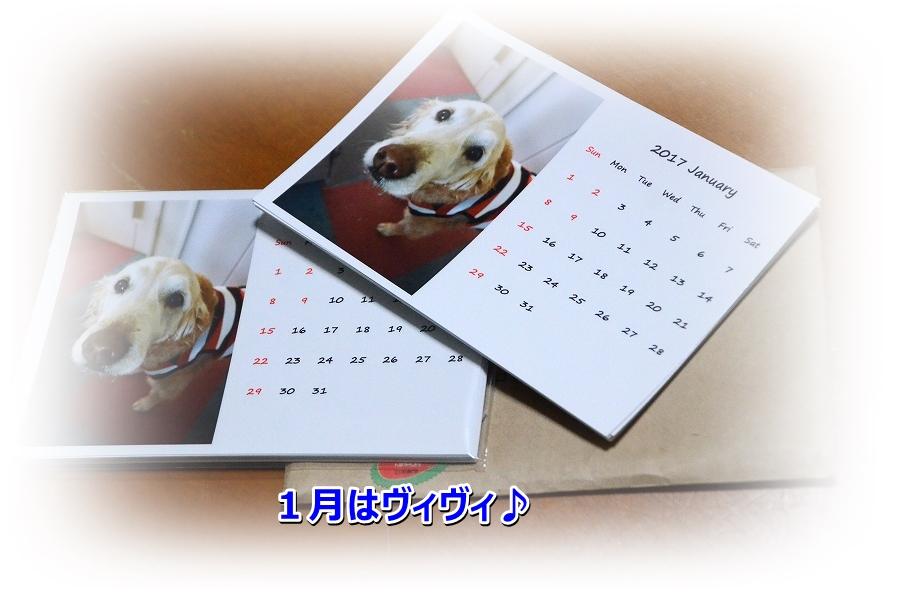 DSC_6261_20161123171523b12.jpg