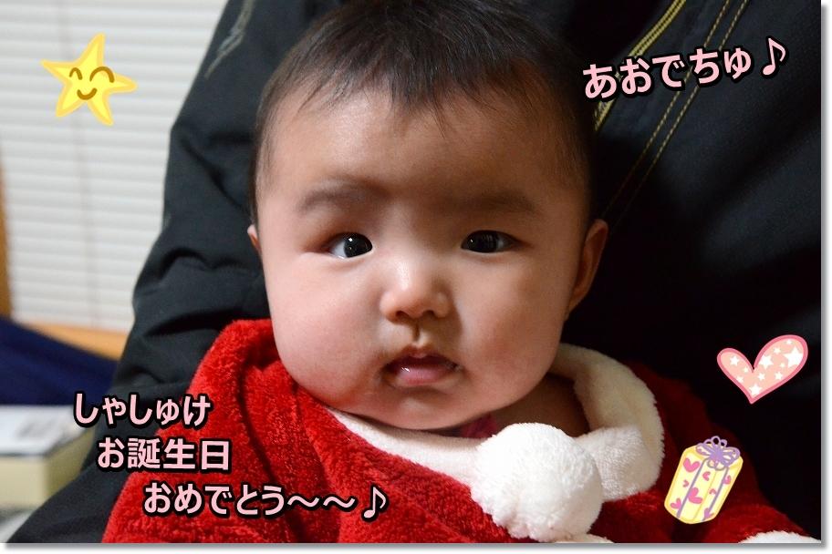 DSC_6877_201612072322396f1.jpg