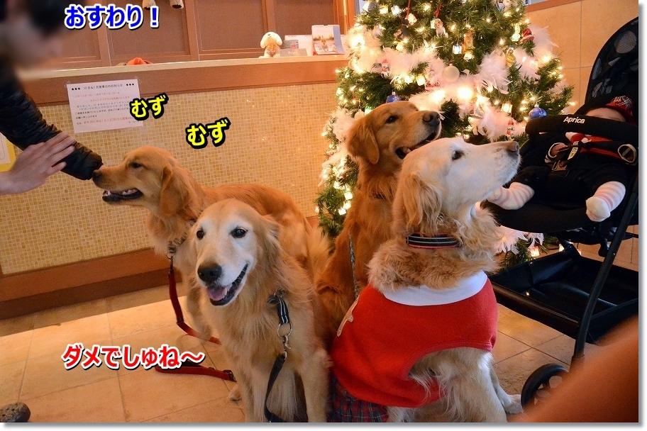 DSC_7316muzumuzu.jpg