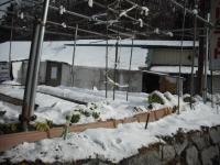2017-01-13重箱石05