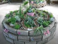 2017-01-29花と泉の公園071