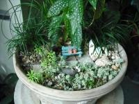 2017-01-29花と泉の公園084