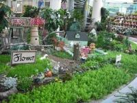2017-01-29花と泉の公園150