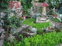 2017-01-29花と泉の公園149