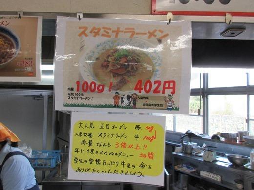 blog281128 入来フェアー (7)