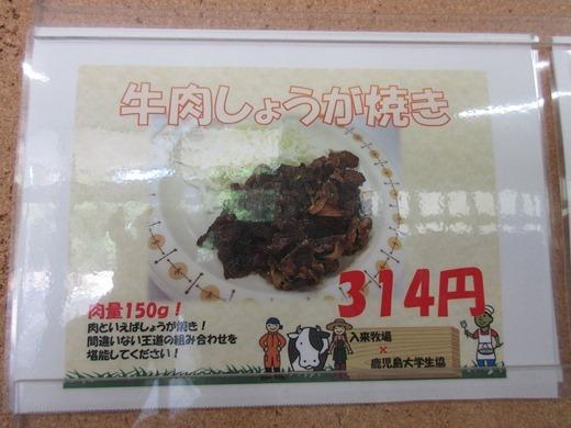 blog281128 入来フェアー (10)