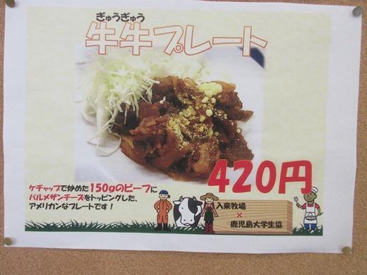 blog281128 入来フェアー (15)
