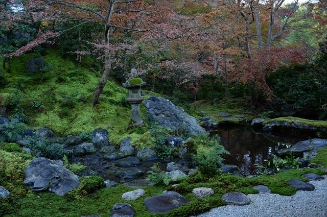 臥龍の庭6p