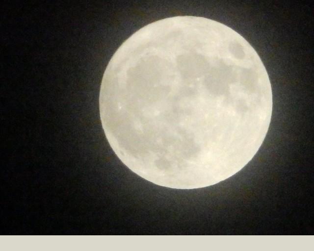 moon1114-2.jpg