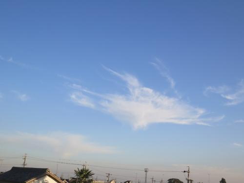 ハチドリみたいな雲