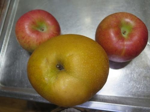 日光のにっこり梨