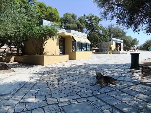 アテネ_アクロポリス周辺で (1)