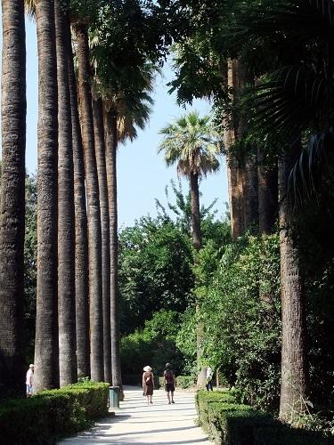 アテネ_国立庭園 (3)