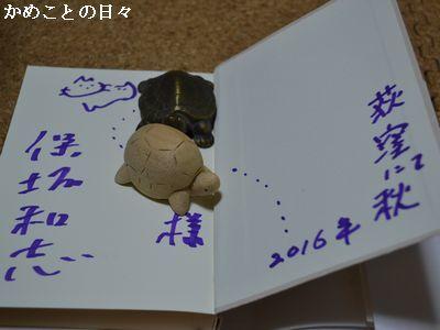 DSC_0243-h.jpg