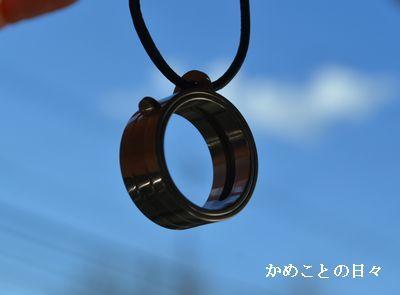 DSC_0813-n.jpg