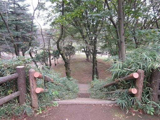 与野公園富士塚山頂より