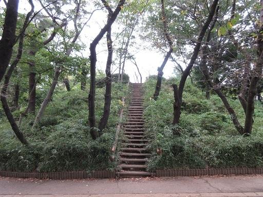 与野公園富士塚