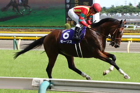 【競馬】グラスワンダー系: グラスワンダー → スクリーンヒーロー → モーリス