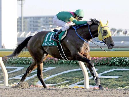 【競馬】田辺「ムーアは日本では普通の上手い騎手」