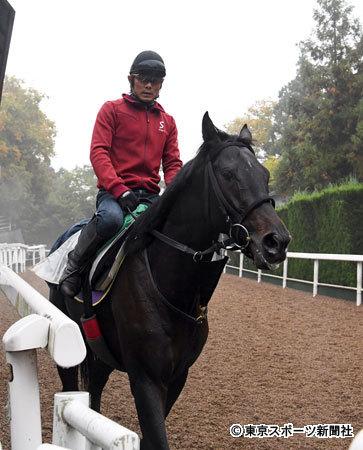 【東スポ杯2歳S】古川助手「トレセンに入って20年以上になるけどムーヴザワールドほど跳びが大きい馬はいなかった」