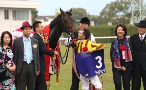 【競馬】クイーンズリング 香港C挑戦へ