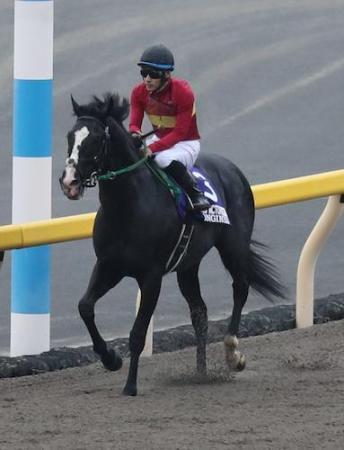 【競馬】有馬記念のゴールドアクターがおいしくなったな