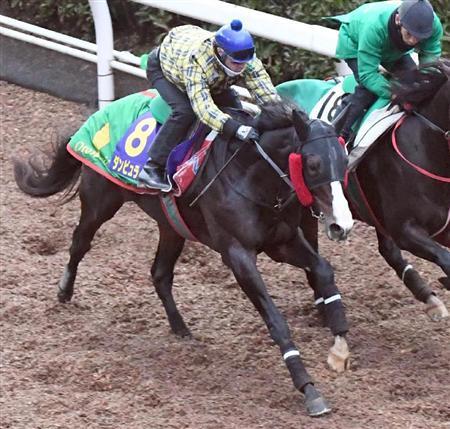 【競馬】ルメ、戸崎は残り開催5日で武豊以来の200勝出来ると思う?