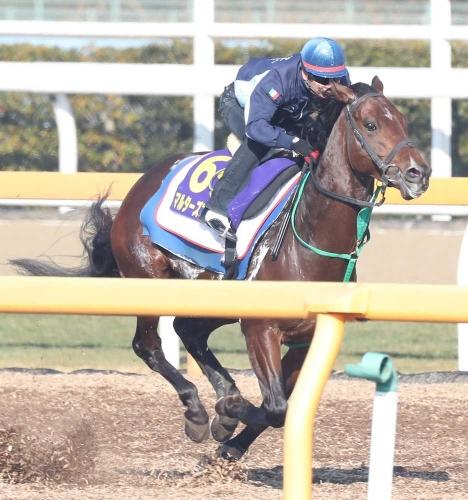 【有馬記念】武士沢「JC見ててこれじゃつまらないと思った 4コーナーまでこの馬がカメラ独占しますよ」