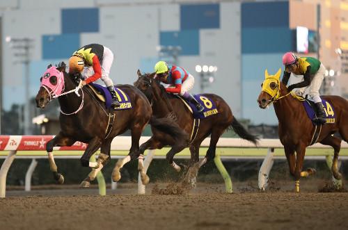 【東京大賞典】コパノリッキー騎乗の戸崎騎手「馬が頑張ってない」