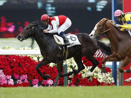 【競馬】今年もショウナンの馬名募集やってるよー!