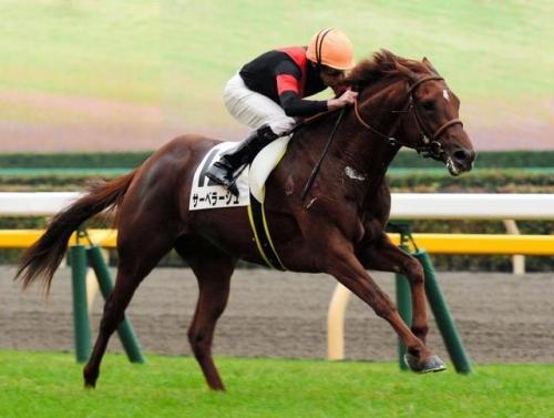 【京成杯】柴山雄一(38)、ダービー制覇のチャンス 京成杯で新馬圧勝のサーベラージュ(堀厩舎)に騎乗