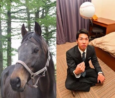 【競馬板】阪神2位小野泰己、名前の由来は「タイキブリザード」