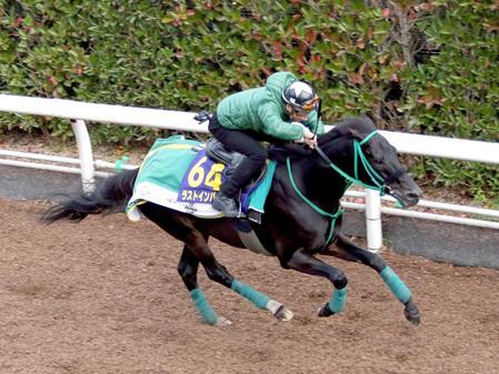 【競馬】松田博資厩舎から転厩した馬って全然ダメじゃね?